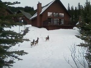 Mountaineous Chalet Weekly Rental $1100. max. 6 persons