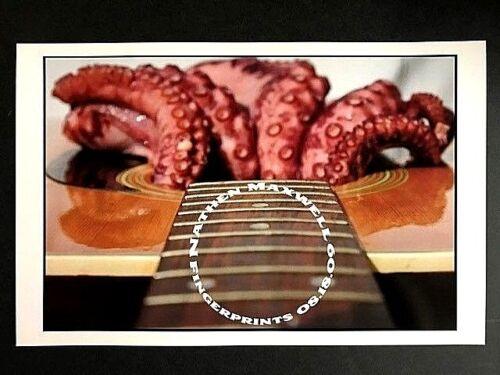 Nathan Maxwell - Live At Fingerprints 8/18/09 Concert Poster Orig Flogging Molly