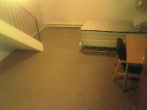 Entire Spacious Basement Sublet. $450/month. Kitchener / Waterloo Kitchener Area image 6