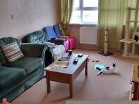 2 Bedroom Maisonette Homeswap for your 2 Bedroom Home in Lancaster, Morecambe or Heysham