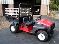 Snapper Trail Cruiser UTV