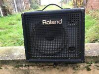 Roland multi purpose/Keyboard ampliofier..BARGAIN