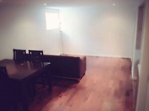 fully furnished newly built basement suit in kincora nw