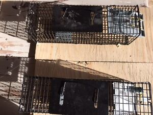 2  ANIMAL TRAPS -- NEW CONDITION
