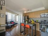 Large, New Condo -1 Bedroom King West, steps to Liberty Village