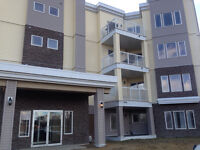 2 Bed 2 Bath Aprt. style condo for Rent
