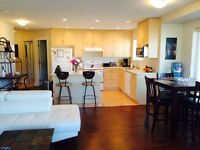 Roommate for Beautiful 2 bed 2 bath newer condo
