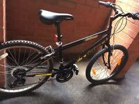 mountain bike for age 10 and up brand new