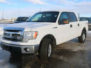 2014 Ford F-150 XLT, 301A, 5.0L V8, 4X4, SYNC, KEYLESS ENTRY, TA