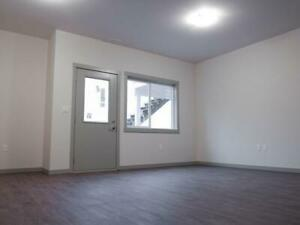 1 Bedroom Daylight Suite For Rent - $995/mo