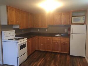 Newly Renovated one bedroom basement apt available Dec 1st!!