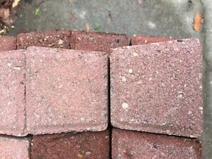 Patio bricks $50 obo