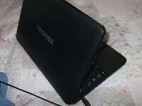 toshiba satellite pro c850 laptop,no texts plz.