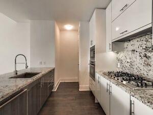 Luxury Waterfront 2 bedroom + den Suite with Parking