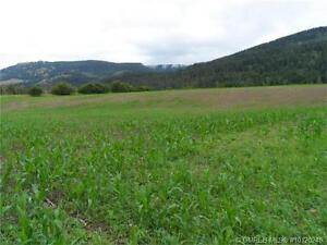 62 Acres, Great Land to Build Your Dream Home