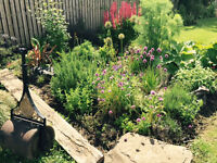 Avon Grove gardening services we offer a high quality gardening service !
