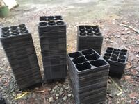 Seed trays, plant pots, potting-on trays, plug plants - Various and Many