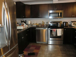 Furnished clean 3 rooms in Timberlea with own full bathroom ASAP