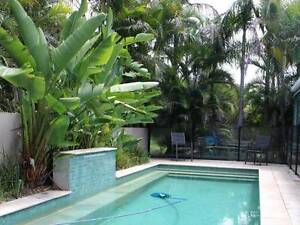 Large room in Parkwood available Parkwood Gold Coast City Preview