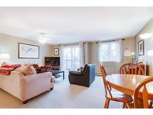 Attention First Timers!!! Great Condo ONLY $199,900 Kitchener / Waterloo Kitchener Area image 2
