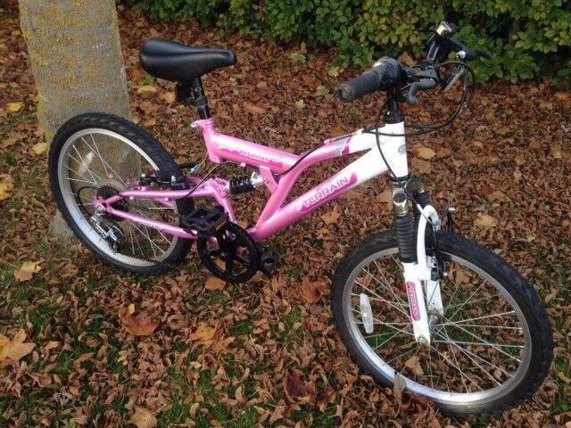 Girls 19in bike