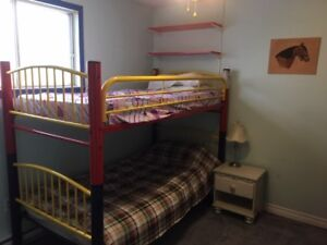 Halifax Homestay Room for Rent ASAP close to downtown