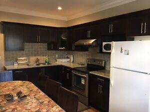Fully Furnished Newly Constructed 1B /R Basement Apartment