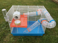 Hamster cage with house , food bowl, bottle, wheel, carry case, play ball, see saw, climbing wall.