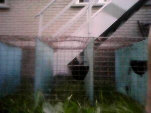 Cage d'engraissement pour Lapins
