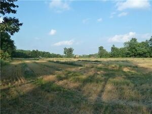 Caledon Over 31 Acres With 5 Bedroom House and 2 Rental Units