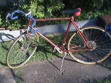 Tom Wallace special bicycle. Canterbury Canterbury Area Preview
