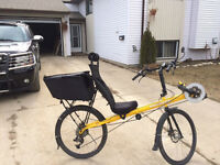 EXCELLENT RARE BACETTA RECUMBANT BIKE