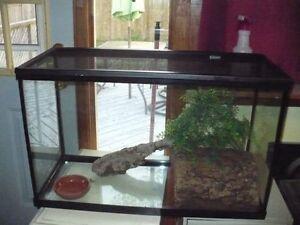 29 gallon terrarium w/ mesh lid and accessories for sale