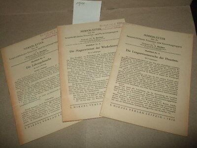 3x Merkblatt über Parasiten und -Gruppen,1950,Tierarzt;Veterinär,DDR-Fachbuch