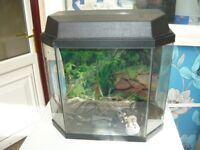 Half hexagon fishtank