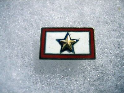 Gold Star Son in Service Pin