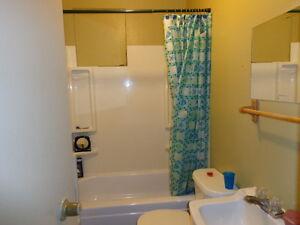 Maison avec revenue, pour petite hypothèque ou investisseur Saguenay Saguenay-Lac-Saint-Jean image 8