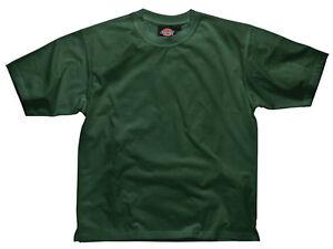Dickies-sh34225-BG-m-Algodon-Camiseta-Botella-Verde-Mediano
