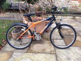 Raleigh Raptor Kids Bike