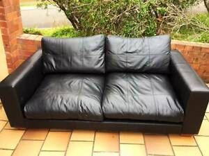 Super Comfy Leather 2 seater couch! Excellent condition. Dover Heights Eastern Suburbs Preview