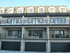 Trendy 4 Level Newer Luxury Townhouse (Ravine Location)Southwest