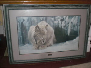 Robert Bateman - Framed Dozing Lynx