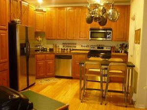 Beautiful 2 bedroom condo 5 minutes from downtown