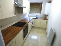 A modern one bedroom flat with private balcony very close to Poplar station