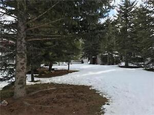 11 Timber Way, Rural Mountain View County Land For Sale