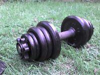 28.6 lb 13 kg Metal Spinlock Dumbbell Weights - Heathrow