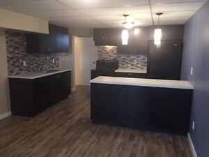 Fully renovated basement suite in Kensington!