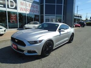 2015 Ford Mustang **FAST AND FUN! LOADED MUSTANG TURBO! 310 HP!*