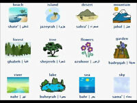 Arabic Conversation Lessons - Modern Standard Arabic (MSA)
