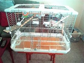 bird cage,fully equiped,perches,dishes etc